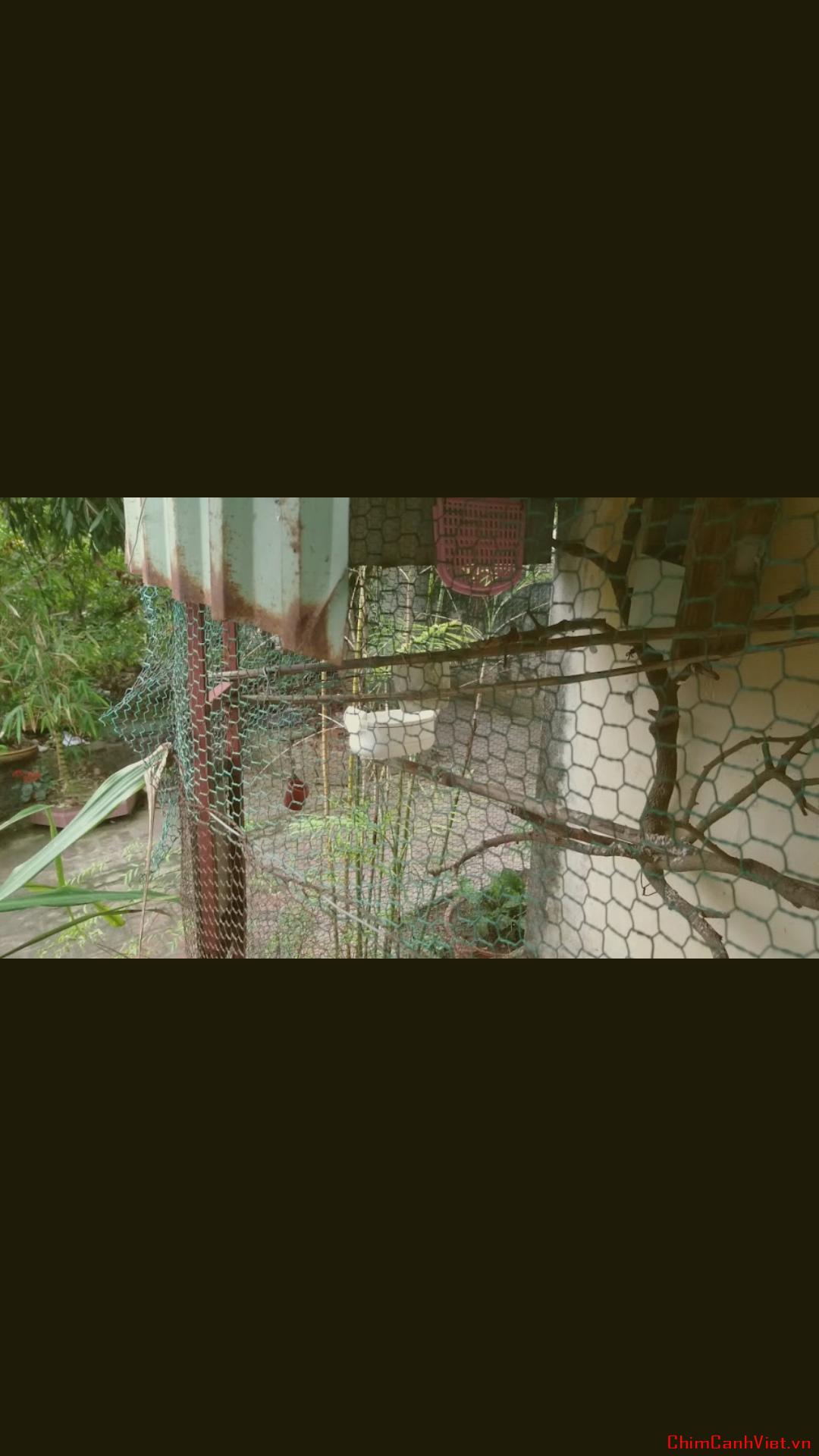Screenshot_20170717-222241.png