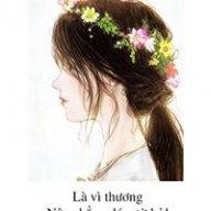 thai1592003
