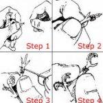 Cách đeo vòng chân cho chim