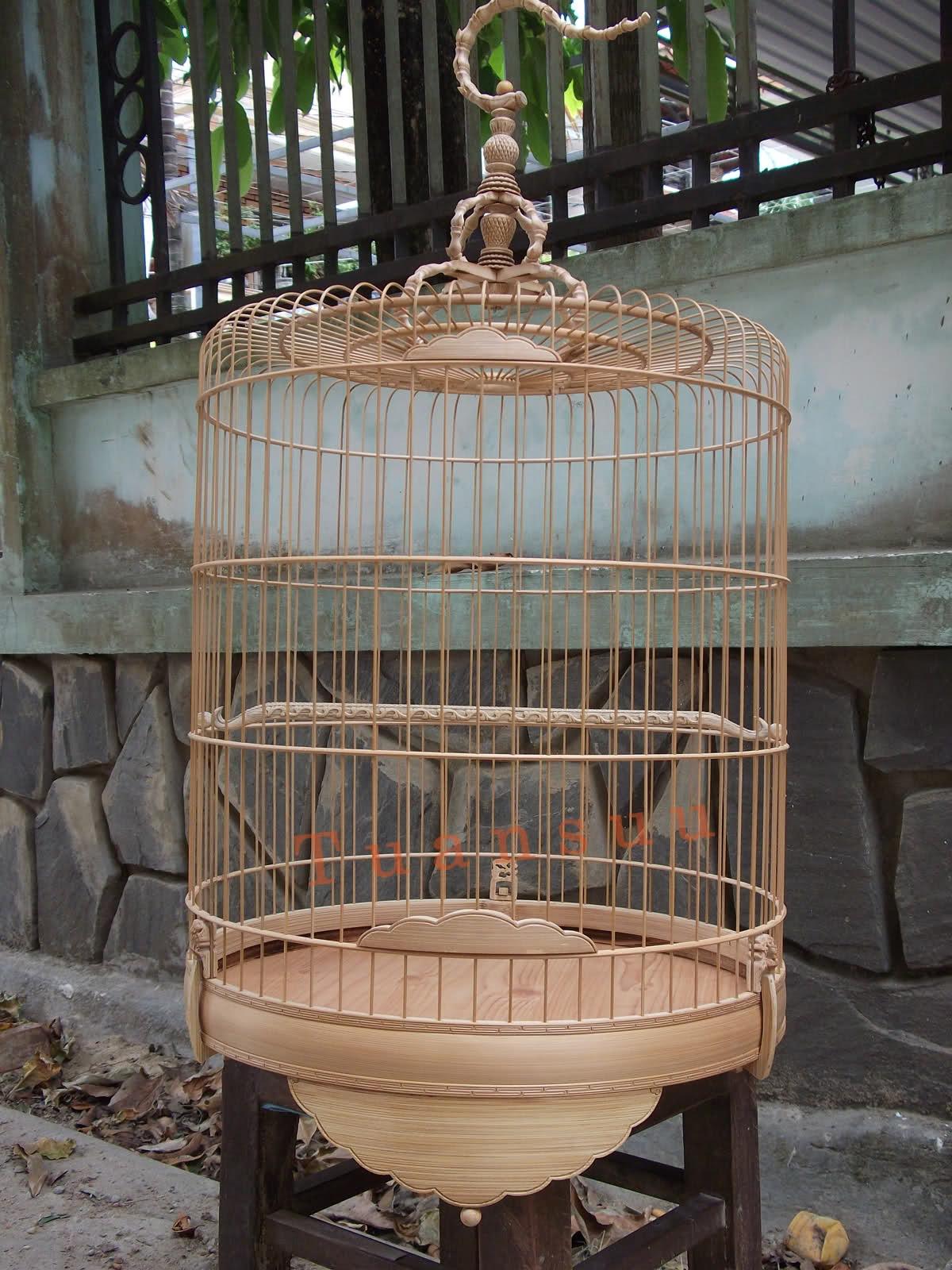 Bật mí cách chọn lồng chim chào mào giá rẻ