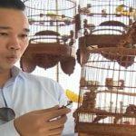 Cafe chim bên Hồ Thuyền Quang