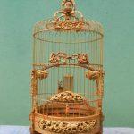 Giá lồng chim chào mào phụ thuộc vào yếu tố nào?