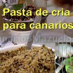 Công dụng từng loại hạt và rau quả trong khẩu phần chim yến