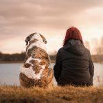 5 mẹo để giúp con chó của bạn phát triển khỏe mạnh