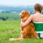 Ôi! Làm thế nào để ngăn con chó con của bạn cắn