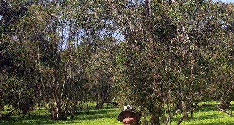 Một chuyến trầm mình 'săn' chim quý trong vườn quốc gia