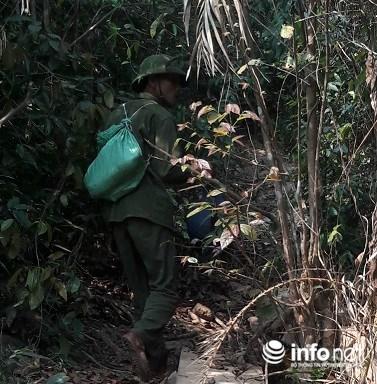 Lạ lùng chuyện mua chim trên cây ở Quảng Bình